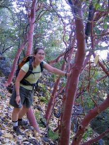Leaning on a madrone on Mount Tam