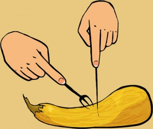 illustration of slicing a butternut squash