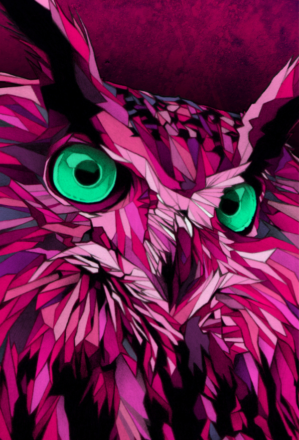 Dani Blázquez - Burton snowboard owl closeup