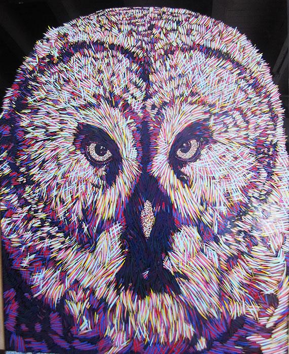 baso fibonacci - owl