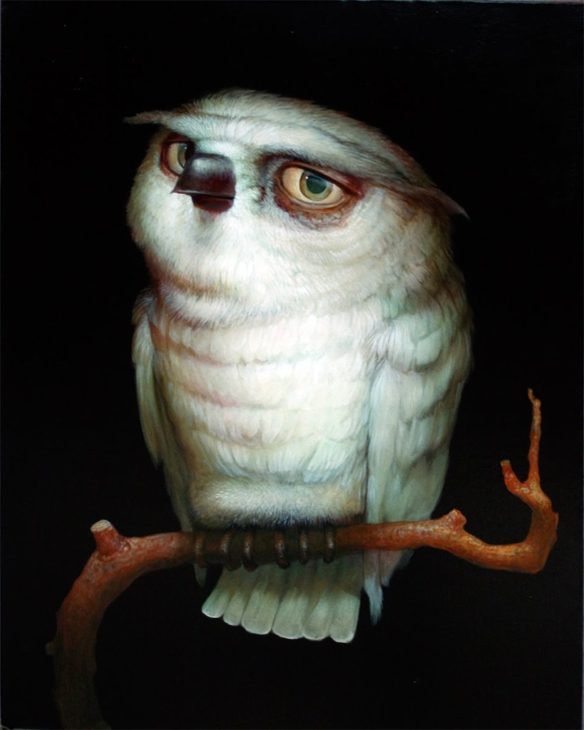 brown, michael - owl