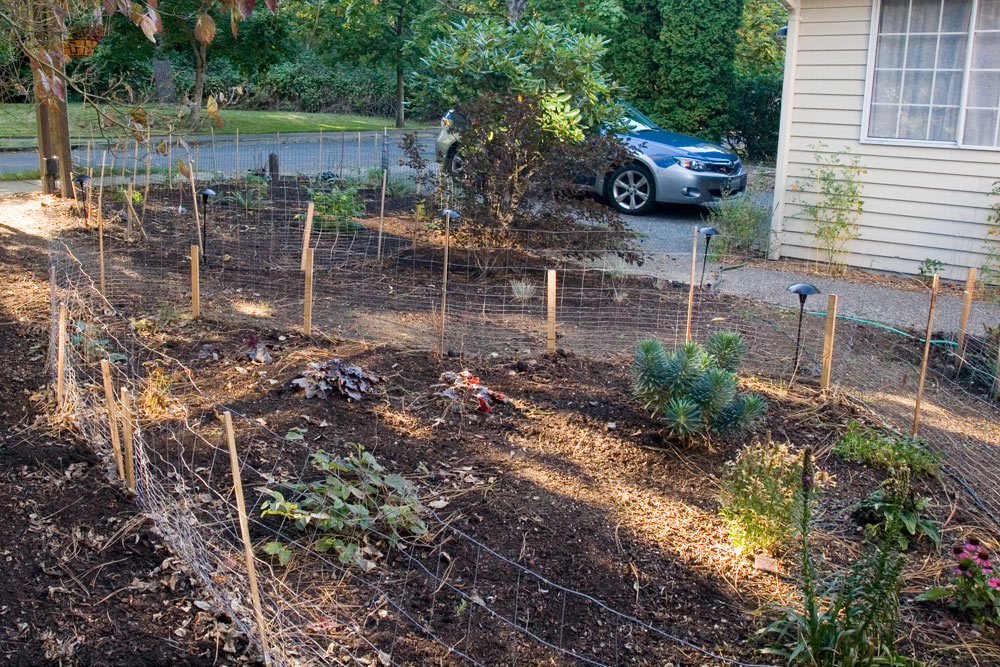 Unimpressive middle bed until the shrubs fill in.