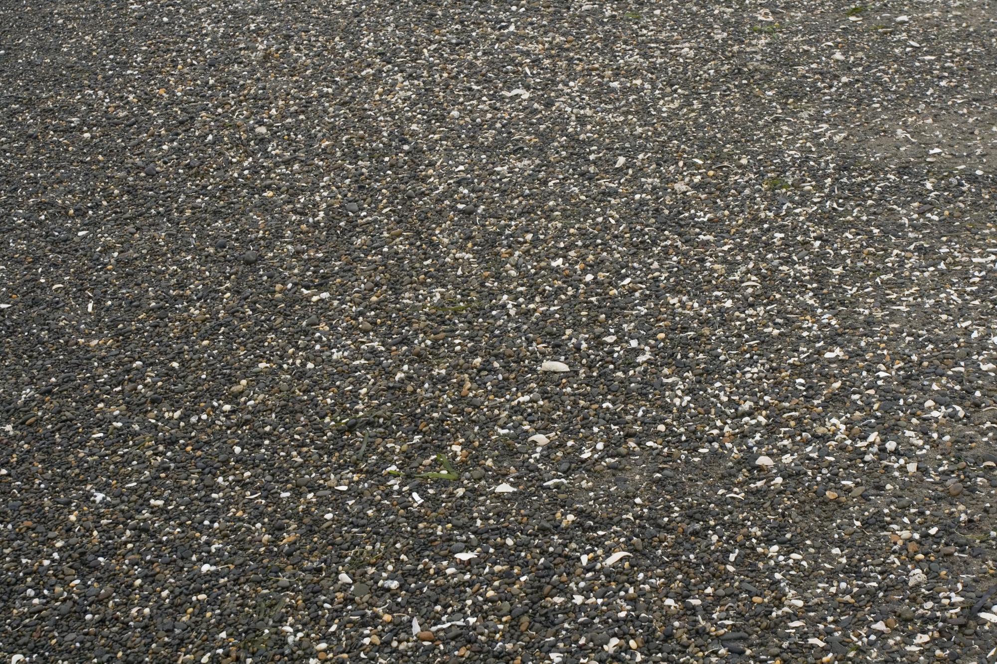 Ocean Shores beach pebble texture