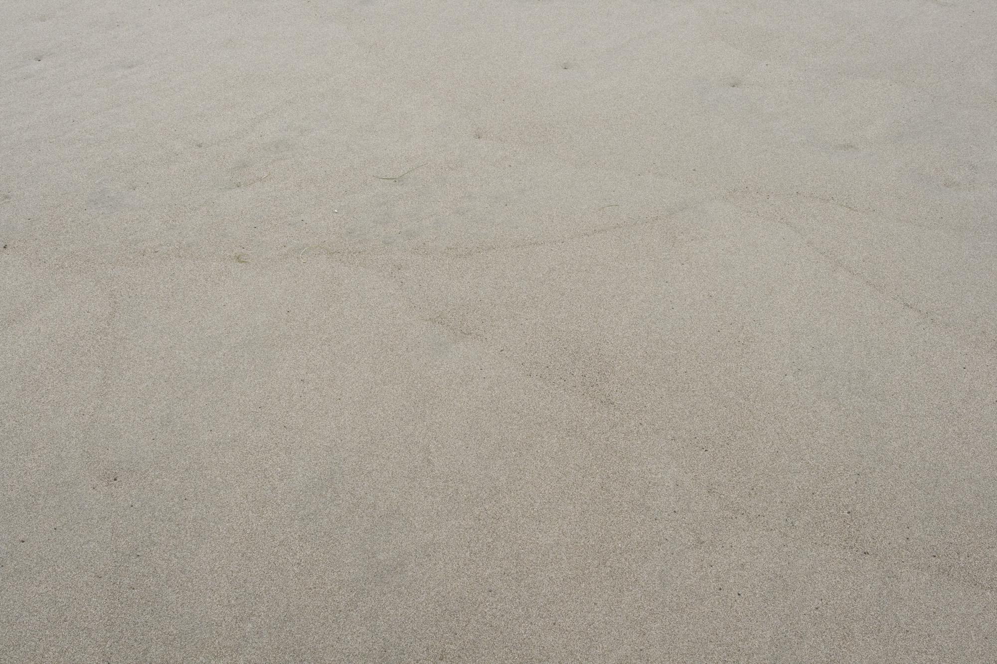 Ocean Shores beach sand texture