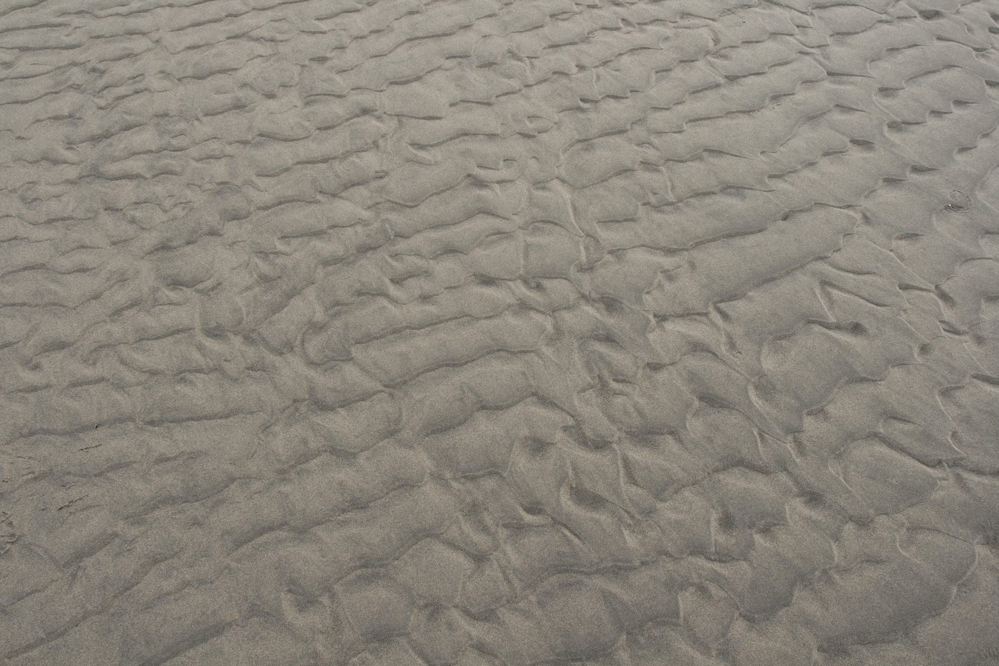 Cape Disappointment beach sand texture