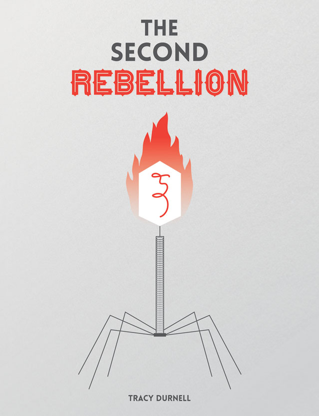 mock cover for The Second Rebellion