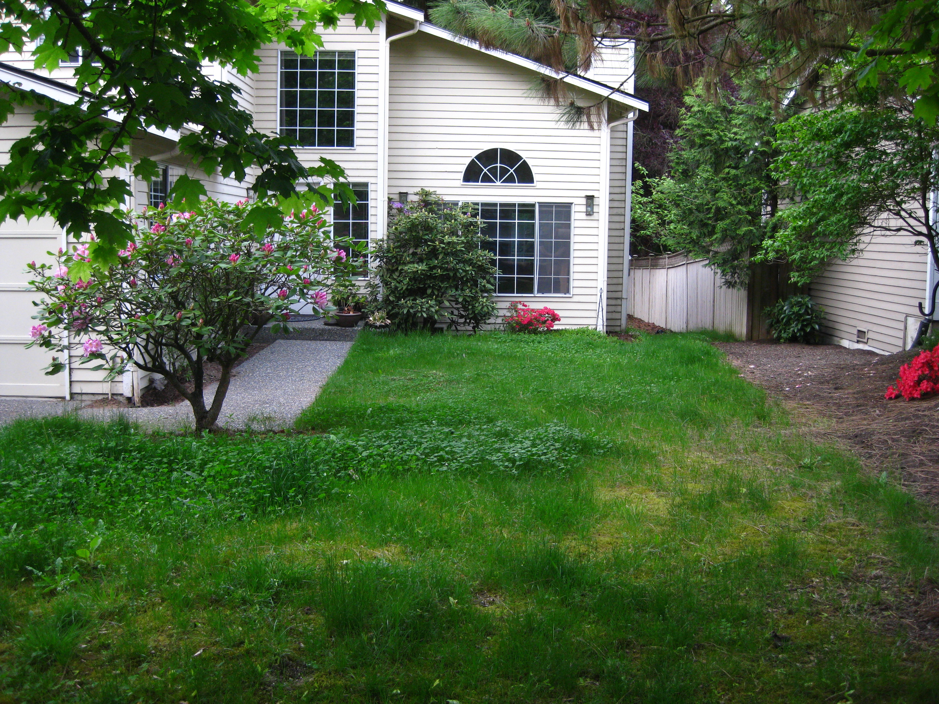 How Much Did It Cost To Replace My Lawn With A Garden Pnw